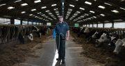 Usg bydła dla lekarzy weterynarii