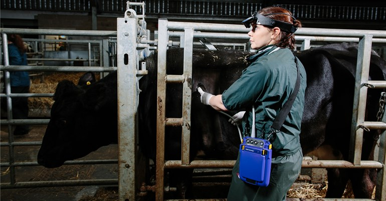 Gogle ultrasonograficzne do Usg Bydła